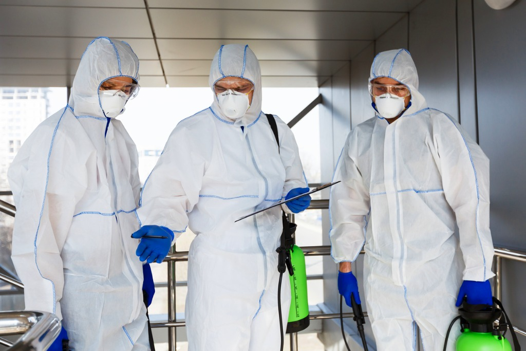 An Introduction To Mold Remediation Service For Your Home
